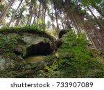 Forest In Luxembourg Larochette