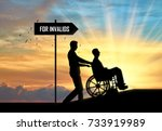 disabled person in a wheelchair ... | Shutterstock . vector #733919989