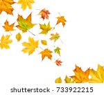 falling leaves isolated on... | Shutterstock . vector #733922215