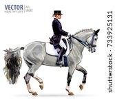 equestrian sport. horsewoman... | Shutterstock .eps vector #733925131