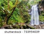 waterfall in a cloud forest... | Shutterstock . vector #733954039