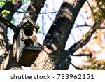 the wooden bird's nest hang on