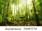 Green Forest And Huts In A...