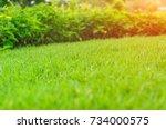 morning sunlight shines on...   Shutterstock . vector #734000575