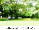 blurred beautiful morning light ... | Shutterstock . vector #734005645