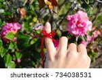 knot of red string on pinky... | Shutterstock . vector #734038531