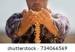 farmer holding corn grains in...   Shutterstock . vector #734066569