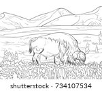 coloring page for adults and... | Shutterstock .eps vector #734107534