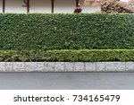 street wall background ... | Shutterstock . vector #734165479