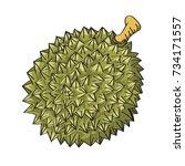 illustration of durian isolated ... | Shutterstock .eps vector #734171557