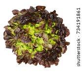 Red Oak Leaf Lettuce From Abov...