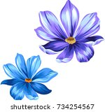 vector daisies  isolated... | Shutterstock .eps vector #734254567