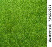 texture green grass. background ... | Shutterstock . vector #734330521