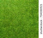 Texture Green Grass. Backgroun...