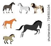 horse pony stallion isolated...   Shutterstock .eps vector #734501104