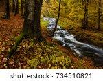 amazing colorful autumn scene... | Shutterstock . vector #734510821