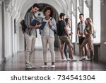 beautiful young students are... | Shutterstock . vector #734541304