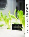 modern agricultural plant... | Shutterstock . vector #734558971