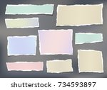 colorful ripped striped note ... | Shutterstock .eps vector #734593897