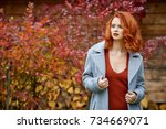 outdoors portrait of colorful... | Shutterstock . vector #734669071