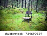 abandoned forest place with a... | Shutterstock . vector #734690839