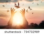 woman praying and free bird... | Shutterstock . vector #734732989