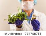 female medicine doctor hand...   Shutterstock . vector #734768755