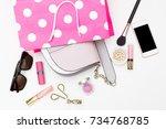 handbag in a pink shopping bag... | Shutterstock . vector #734768785