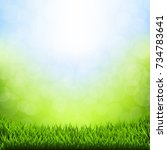 spring bokeh with grass border | Shutterstock . vector #734783641