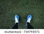 top view of leg wearing stud in ... | Shutterstock . vector #734793571
