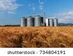 Silos In A Barley Field....