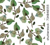 elegant seamless pattern with... | Shutterstock . vector #734848555