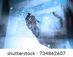businessman hand working with... | Shutterstock . vector #734862607