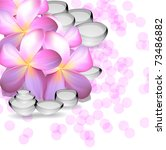 spa. vector background | Shutterstock .eps vector #73486882