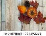 Fall Flat Lay  Orange Japanese...