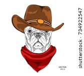 a dog in a cowboy hat. vector... | Shutterstock .eps vector #734922547