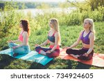 young yoga practitioners in... | Shutterstock . vector #734924605
