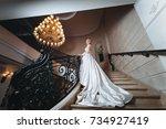 beautiful bride in a white...   Shutterstock . vector #734927419