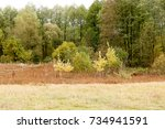 autumn landscape. dark clouds... | Shutterstock . vector #734941591