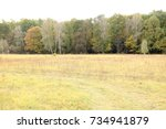 autumn landscape. dark clouds... | Shutterstock . vector #734941879
