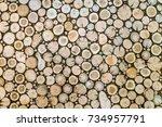 wooden stumps natural...   Shutterstock . vector #734957791