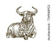 bull. sketch. vector... | Shutterstock .eps vector #734968921