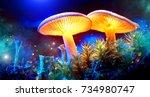 mushroom. fantasy glowing... | Shutterstock . vector #734980747