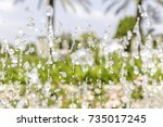 fountain bubbling up water jets ... | Shutterstock . vector #735017245