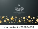 merry christmas calligraphic... | Shutterstock .eps vector #735024751