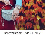 close up of small silvery bag... | Shutterstock . vector #735041419