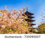 five storied pagoda and cherry... | Shutterstock . vector #735090037
