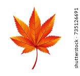 Japanese Maple Autumn Golden...