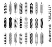 spikelets or cereal wheat or... | Shutterstock .eps vector #735151837