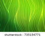 dark green vector indian curved ... | Shutterstock .eps vector #735154771
